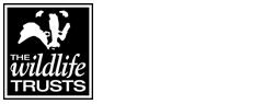 Devon-wildlife-trust-logo-white
